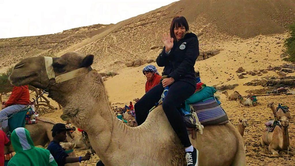 donde montar en camello egipto